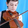 Violin — Stock Photo #1269286