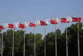 Bahrain National Flag — Stock Photo