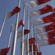 Stock Photo: Bahrain national flags