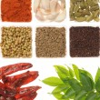 Spices — Stock Photo #1396953