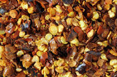 Dried Red Chilly Flakes — Stock Photo