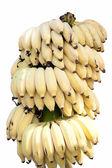 Zralé banány — Stock fotografie