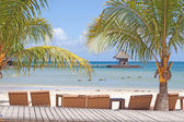 Reclining chairs on tropical beach — Stok fotoğraf