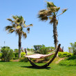 Hammock at lawn in popular hotel — Stock Photo