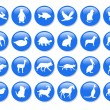Stock Photo: Blue icons.