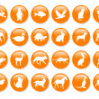 Many orange icons - Stock Photo