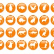 Royalty-Free Stock Photo: Many orange icons