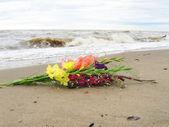 Flowerses. — Stock Photo