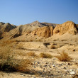 Arava desert - dead landscape, backgroun — Stock Photo
