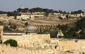 Jerusalem old city - al aqsa mosque — Stock Photo
