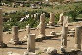 Ancient ruins in Ephesus — Stock Photo