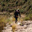 Walking in Andes — Stock Photo #1270311