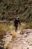 Walking in Andes — Stock Photo