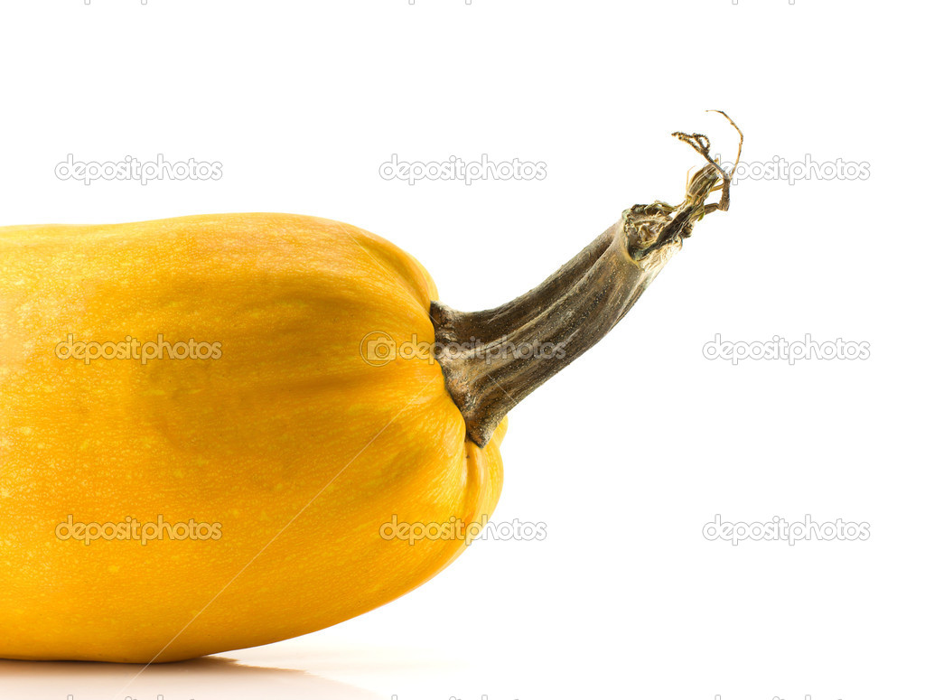 Pumpkin isolated on a white background, crop — Stock Photo #1475998