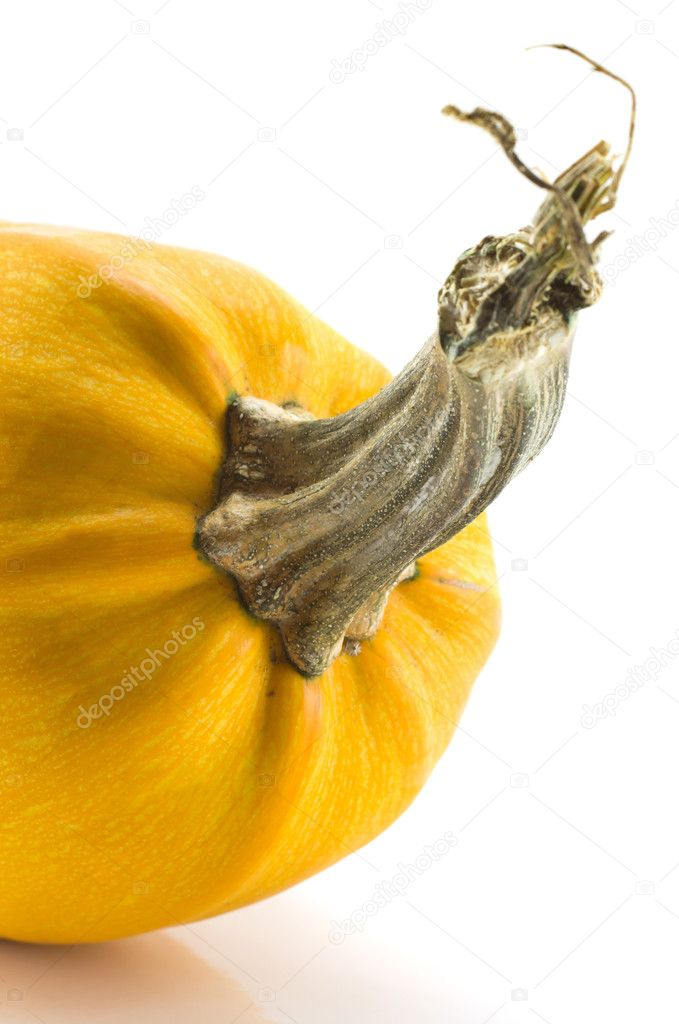 Pumpkin isolated on a white background, crop, frontal part — Stock Photo #1476005