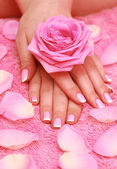 Rose for female hands — Stock Photo