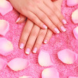 Rose petals and hands — Stock Photo #1263429