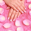 Rose petals and hands — Stock Photo