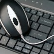 Wired mouse on a keyboard - Photo