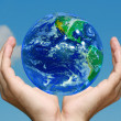 Earth in Hands — Stockfoto #2568463
