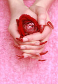 Red rose for female hands — Stock Photo