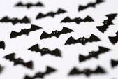Halloween bats — Stock Photo