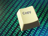 Computer copy key — Stock Photo