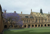 Sydney University Quadrangle — Stock Photo