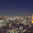 Tokyo from above — Stock Photo #1440743