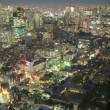 Royalty-Free Stock Photo: Tokyo from above