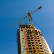 Construction site with big yellow cranes - Stock Photo