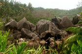 Granite boulders on island La Digue — Stock Photo
