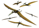 Pterodactyl set — Stockfoto