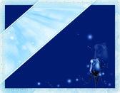 Blue card — Stock Photo