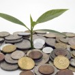 Financial growth.Conceptual image. — Foto de Stock