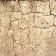 Cement cracks — Stock Photo #1273272