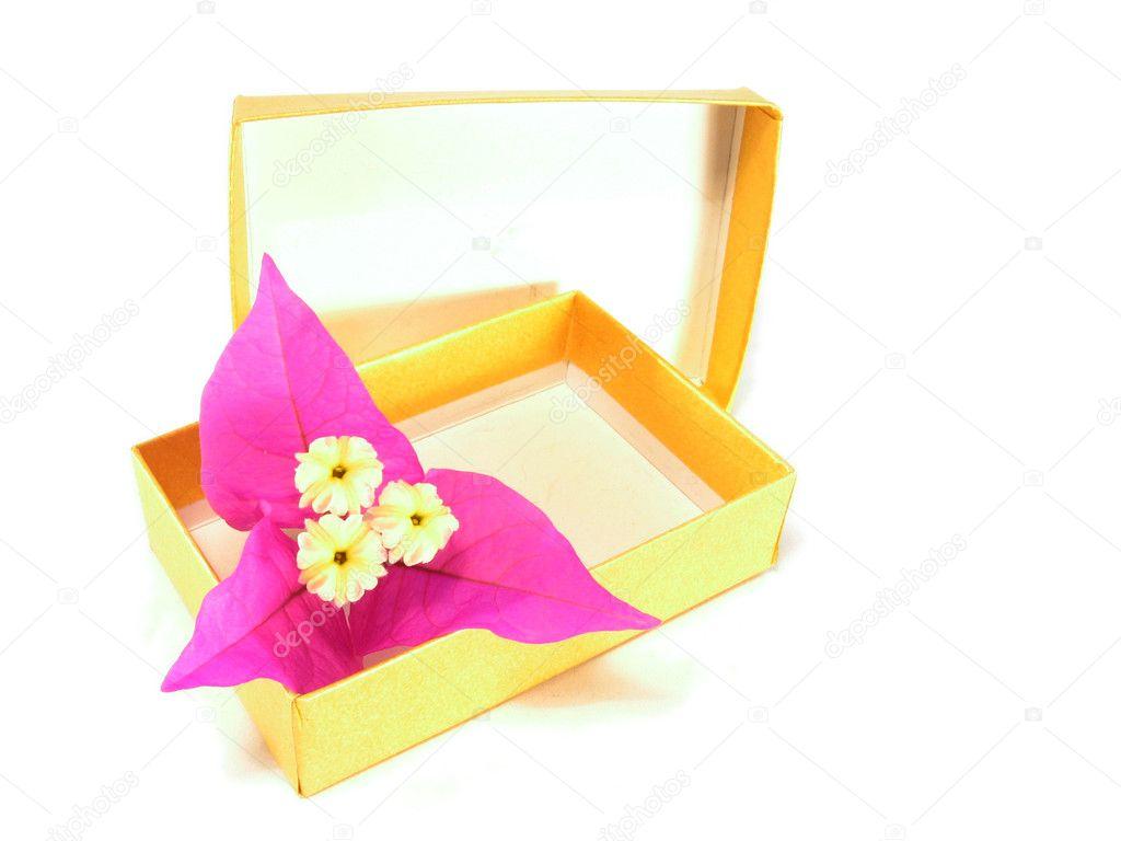 Flower in a box — Stock © sergioyio