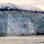 lodowiec Hubbard — Zdjęcie stockowe