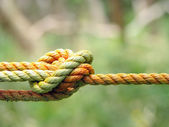 A Knot — Stock Photo
