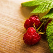 Royalty-Free Stock Photo: Raspberry fruit with stem and leaves