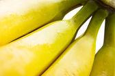 кучу желтые бананы — Стоковое фото