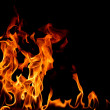 fire flame — Stock Photo