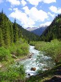 Mountain small river — Stock Photo