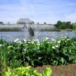 botanical garden kew — Stock Photo