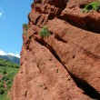 Red rock — Stock Photo