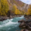 Mountain river — Stockfoto #2464624