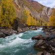 Mountain river — Stock Photo #2464624