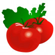 Tomatos — Stock Vector