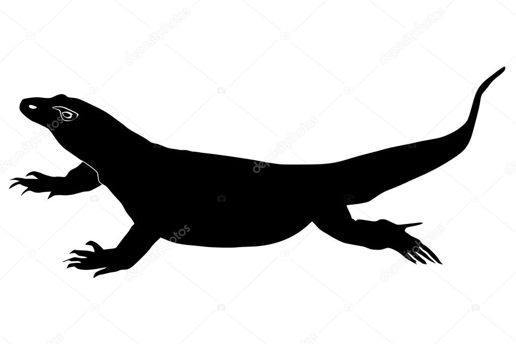 komodo dragon stock vector perysty 1338367. Black Bedroom Furniture Sets. Home Design Ideas