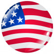Royalty-Free Stock Vector Image: Button the United States